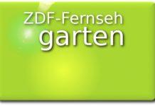 zdf-fernsehgarten-allgemein