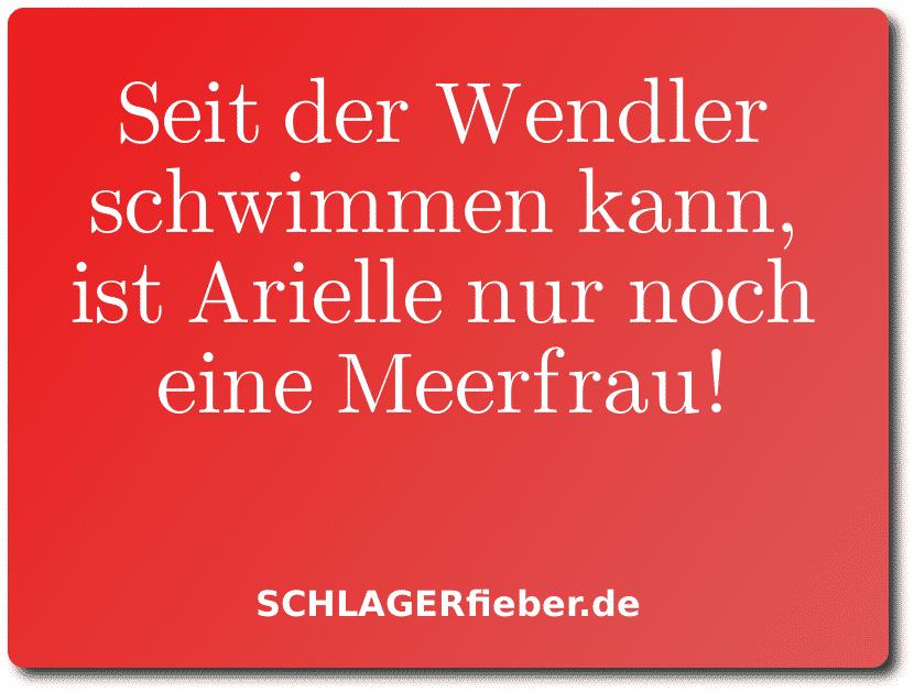 Michael Wendler Spruch lustig schlager