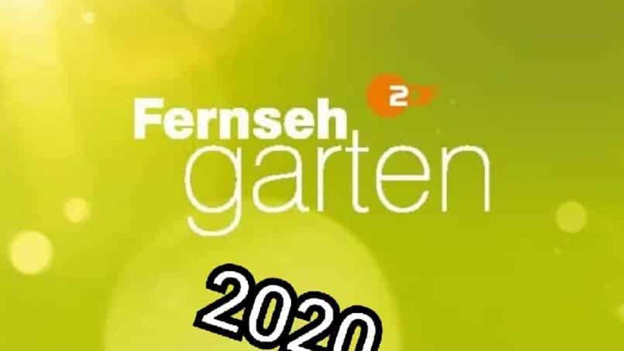 fernsehgarten on tour 2020